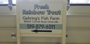 Gehring's Trout